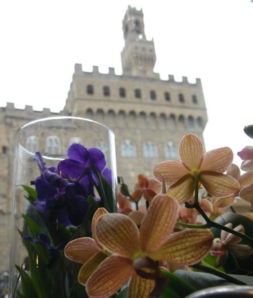 Piante, fiori, semi e bouquet, nel cuore di Firenze